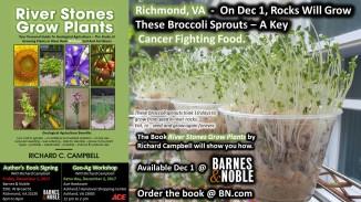 Richmond Dec 1-2 - Book Signing & Workshop