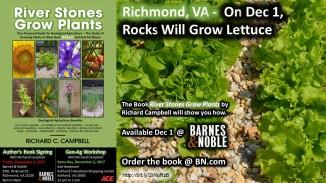 Richmond Dec 1-2 Events - Lettuce