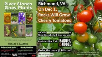 Richmond Dec 1-2 Events - Tomatoes